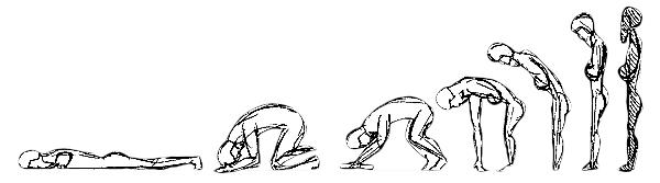 prostrations